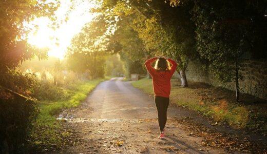 【コレがかかせない】夏のウォーキング 50代セミリタイア主婦の健康維持