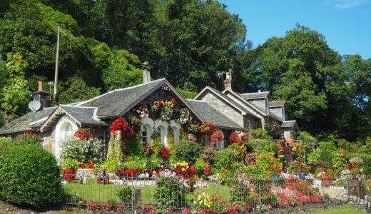 ガーデンデザインはたんなるデザインではない 50代セミリタイア思うこと